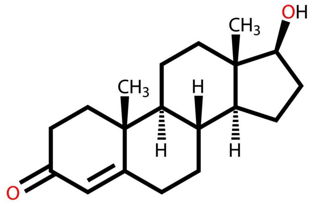 testesterone 2