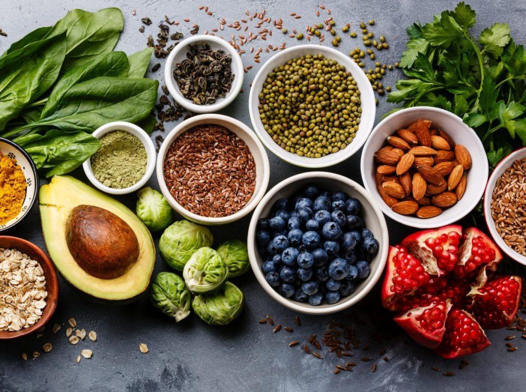 plant based diet paleo